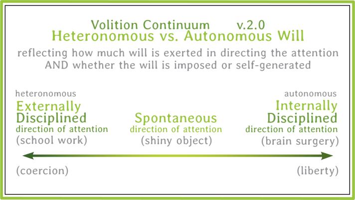 Auto.hetero.Volition Continuum.01