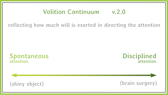 Volition Continuum.01