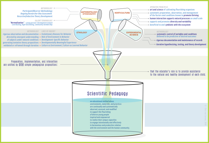 sci ped.lab model.02